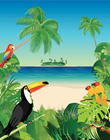 Tropical Beach and Birds