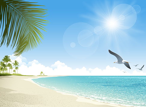 Tropical beach background clipart