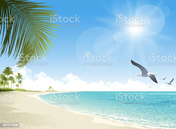 Tropical beach background vector id467375998?b=1&k=6&m=467375998&s=612x612&h=rqjvtqs1rbe8wzp4lefexybcukk 9ua4awbtg b6gyg=