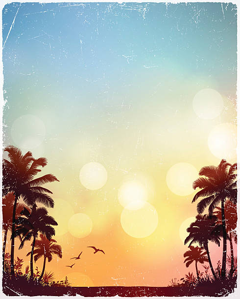 tropical beach background - beach stock illustrations