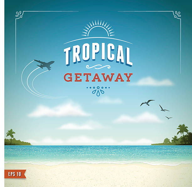 tropical beach background - airplane stock illustrations, clip art, cartoons, & icons