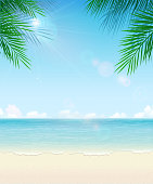 Vector Tropical Beach Background