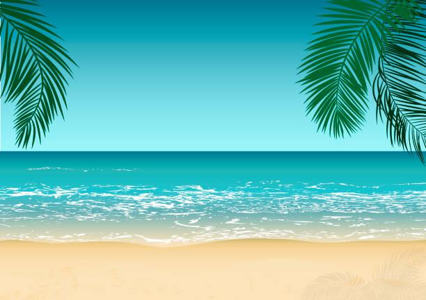 tropikal plaj, deniz dalgaları, dinlenmek ve dinlenmek, vektör arka plan - beach stock illustrations