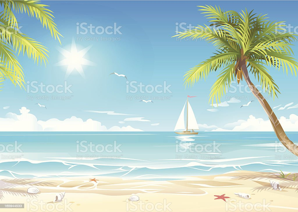 Tropical Beach royalty-free tropical beach stock vector art & more images of animal shell