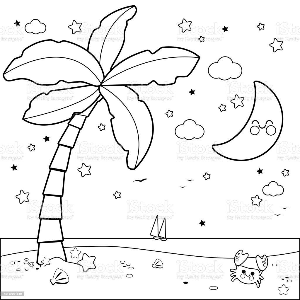 Geceleri Palmiye Ağacı Ile Tropikal Plaj Siyah Ve Beyaz Kitap Sayfa