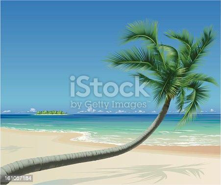 istock Tropical Beach with Palmtree 161057184