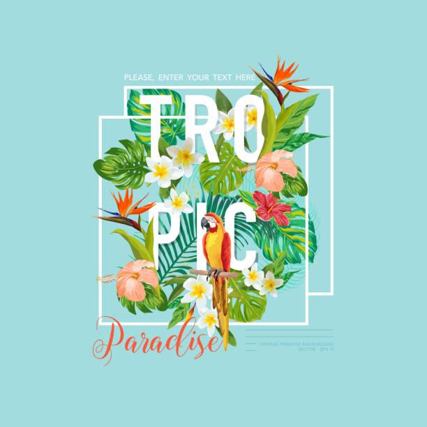 ilustraciones, imágenes clip art, dibujos animados e iconos de stock de pájaro tropical y flores diseño gráfico para la camiseta, de moda - fiesta en el jardín