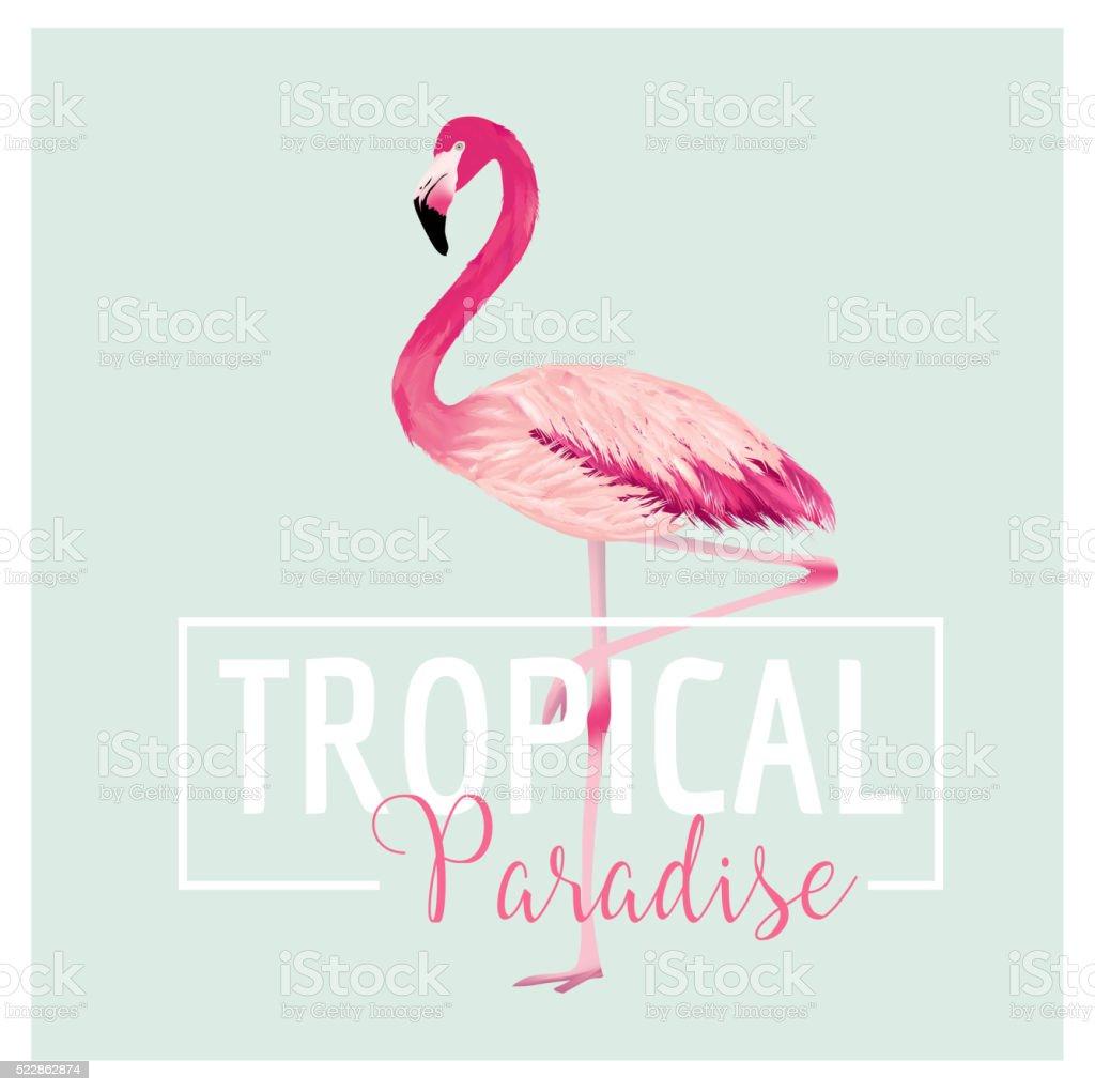 ilustração de pássaro tropical flamingo fundo modelo de projeto de