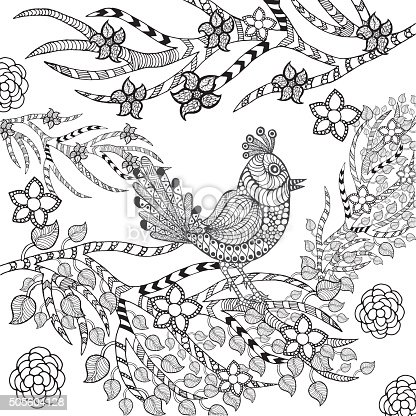 istock Doodle eagle bird for coloring book page, 584216332 istock ...