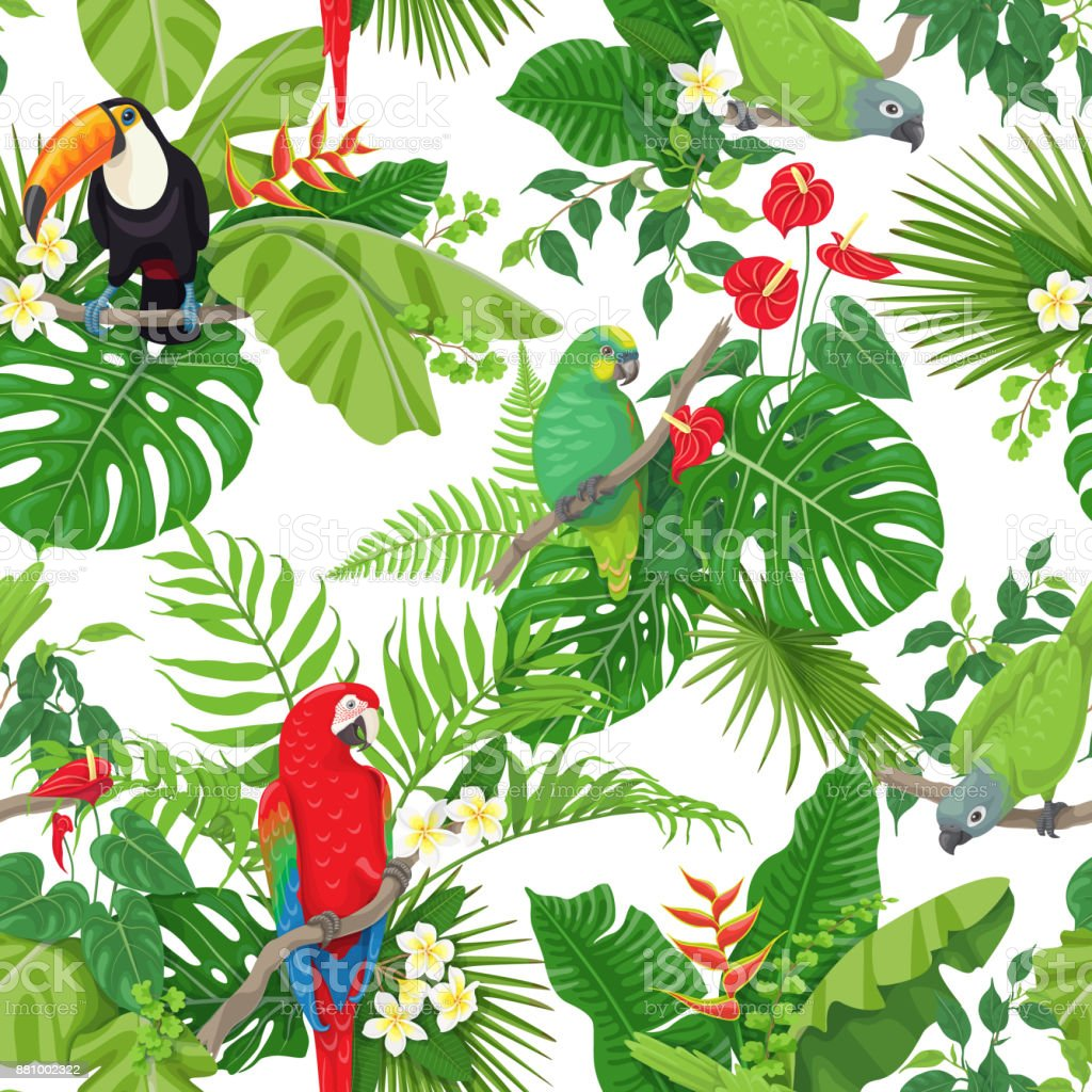 Tropical Birds and Flowers Pattern vector art illustration