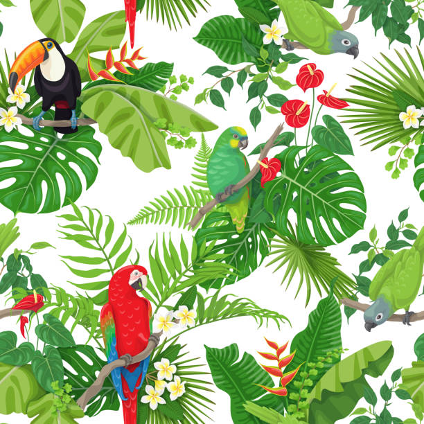 Tropical Birds and Flowers Pattern Seamless pattern made with tropical birds, leaves and flowers on white background. Colorful parrots and toucan sitting on branches. Tropic rainforest foliage texture.  Vector flat illustration. amazon stock illustrations