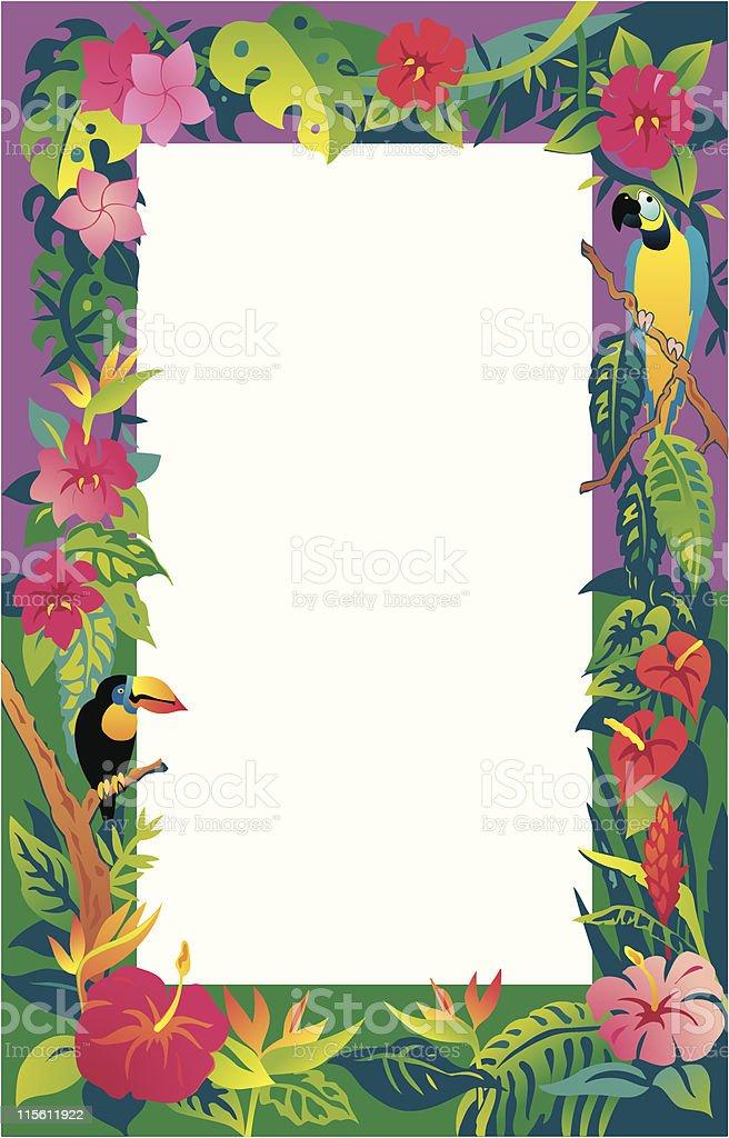 Letter Code Big Island Hawaii