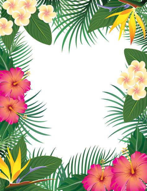 Rainforest Leaves Template Best Tropical Fl...