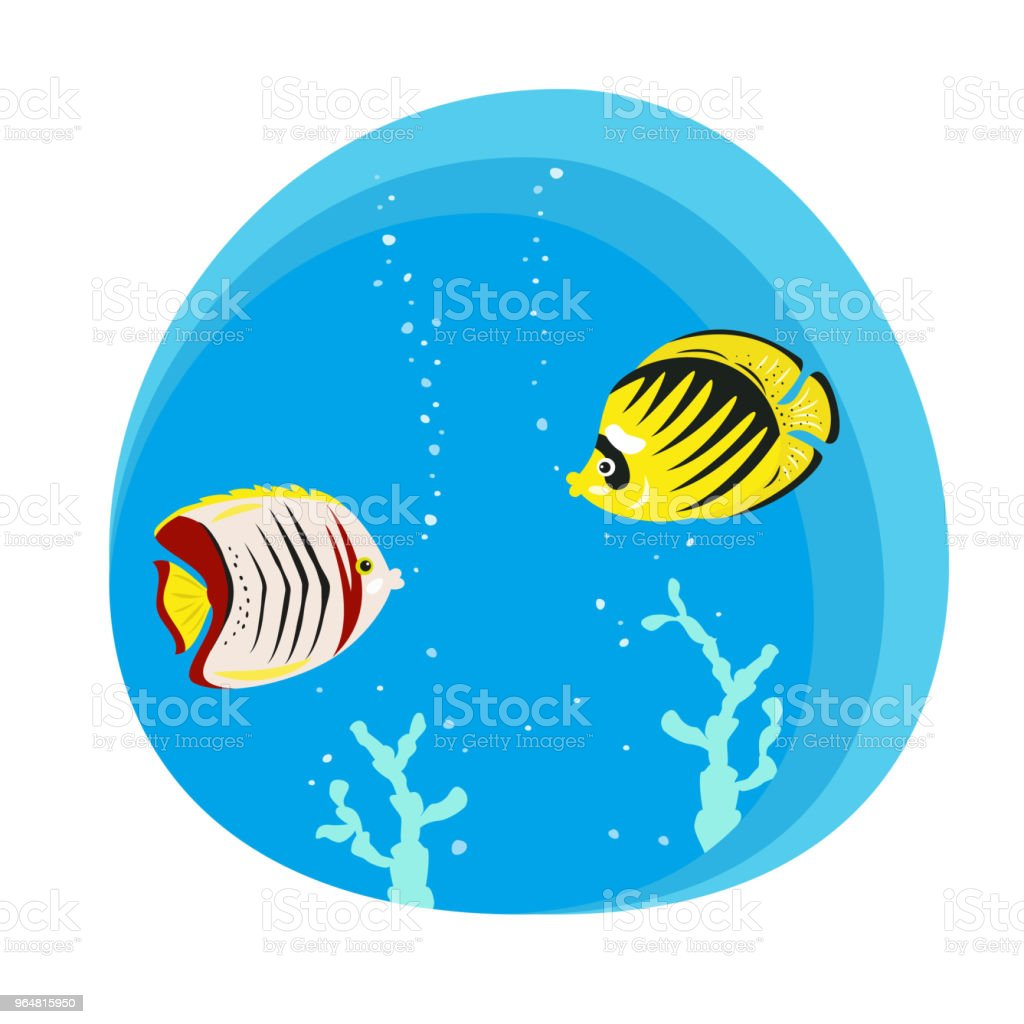 Tropical butterfly fishes on blue background. royalty-free tropical butterfly fishes on blue background stock vector art & more images of angel