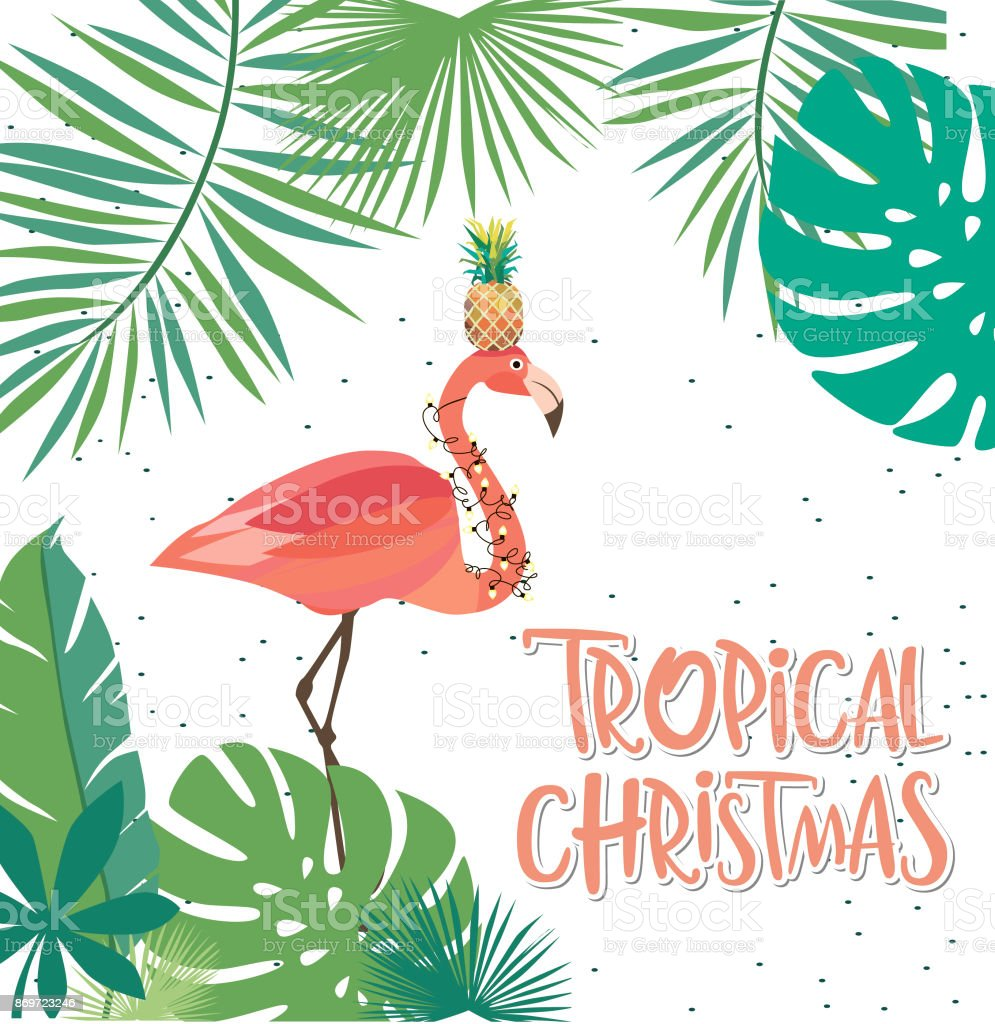 Tropical Christmas Greeting Card Stock Vector Art More Images Of