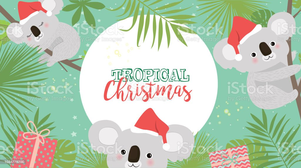 Tropical Christmas.Tropical Christmas Greeting Card With Koala Bear And Palm Leaves Stock Illustration Download Image Now
