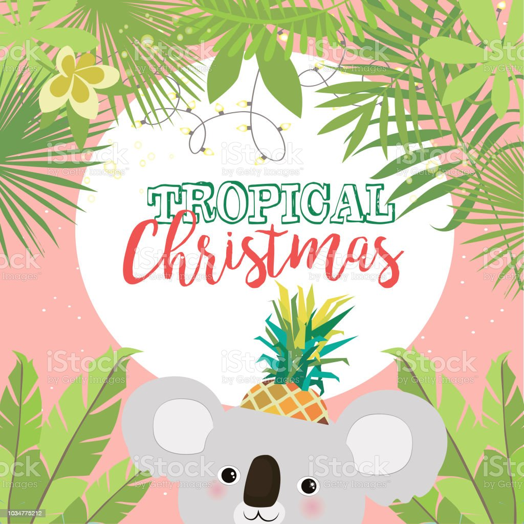Tropical Christmas Greeting Card With Koala Bear And Palm Leaves