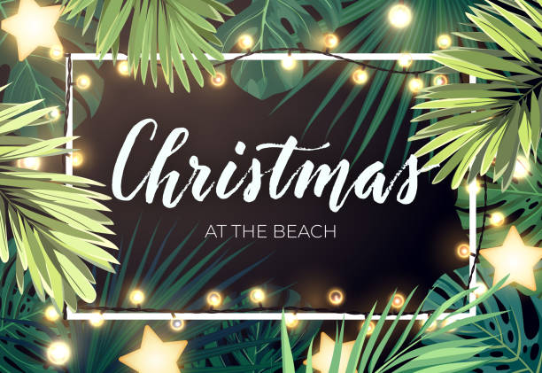 Tropical Christmas on the beach design with monstera palm leaves gold glowing stars and light bulb garlands, vector illustration. Tropical Christmas on the beach design with monstera palm leaves gold glowing stars and light bulb garlands, vector illustration. australian christmas stock illustrations