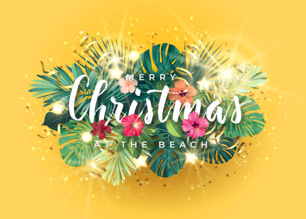 Tropical Christmas on the beach design with monstera palm leaves, hibiscus flowers, gold glowing stars and light bulbs, vector illustration. Tropical Christmas on the beach design with monstera palm leaves, hibiscus flowers, gold glowing stars and light bulbs, vector illustration. australian christmas stock illustrations
