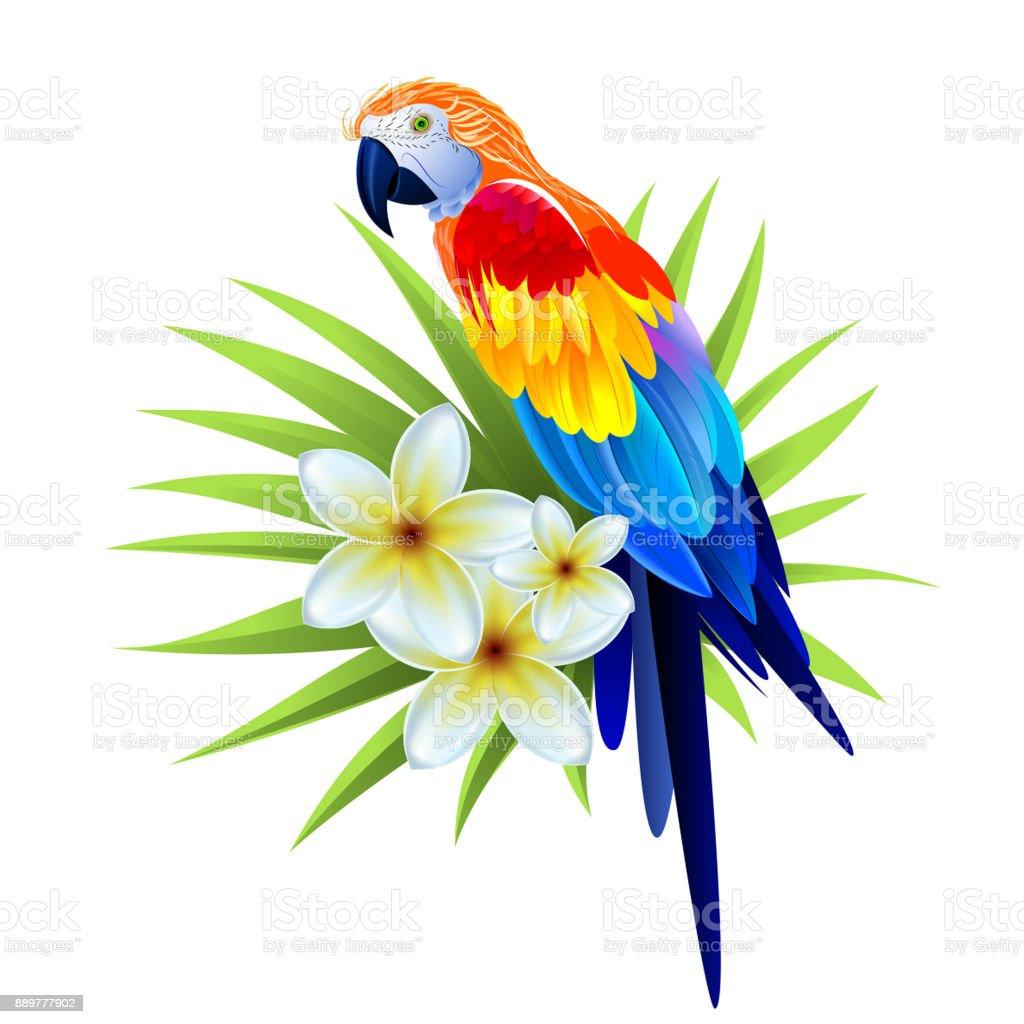 Tropischen farbigen Papagei mit Blätter der Palmen und weißen Blüten. Editierbare Vektorbild. – Vektorgrafik