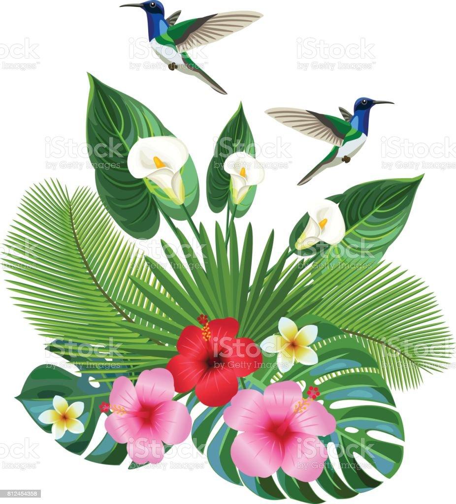 Tropischen Komposition Mit Colibri Vektorillustration Stock Vektor