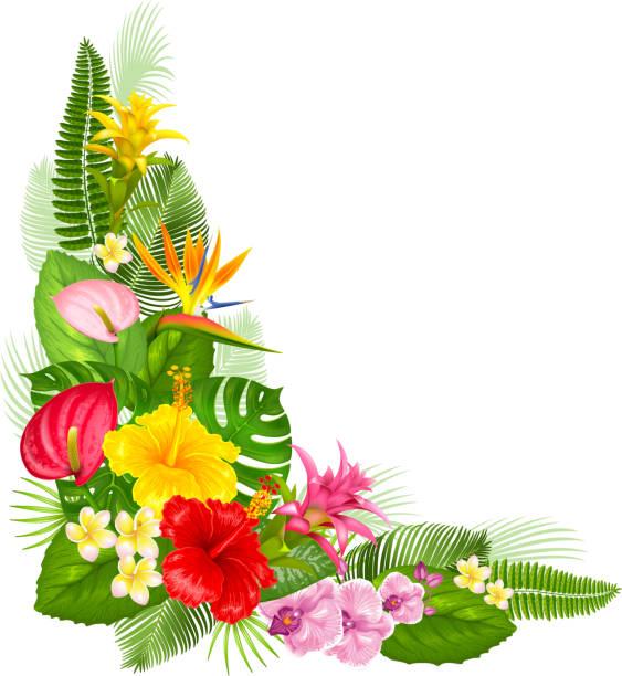 tropical corner design - hawaiian lei stock illustrations, clip art, cartoons, & icons