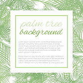 Tropical Design Template or Border With Palm Leaves