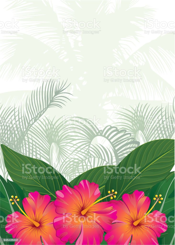 tropical design template with copy space for text nature flower leaf