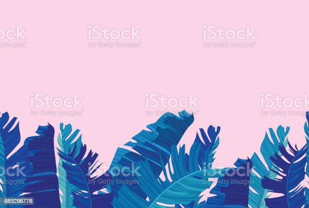 Tropical design with exotic palm leaves vector id683296776?b=1&k=6&m=683296776&s=612x612&h=1x4fjf mrhcog bgmcazal1h4v4bex0lzaxiyw43vme=