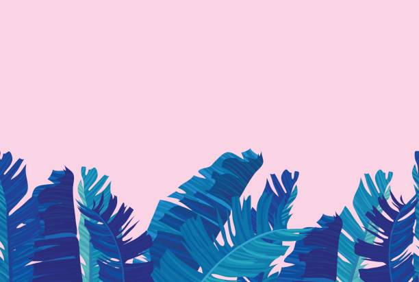 Tropical design with exotic palm leaves. Seamless border with neon colored tropical exotic palm leaves on abstract pink blue style background. Fabric, wrapping paper print. Vector illustration stock vector. banana borders stock illustrations