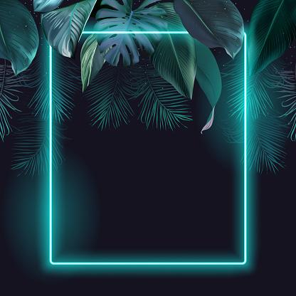 Tropical elegant frame arranged from exotic emerald leaves Design vector.