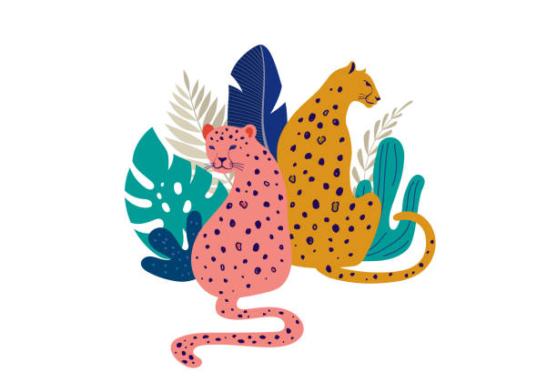 Tropical exotic animals and birds - leopards, tigers, parrots and toucans vector illustration. Wild animals in the jungle, rainforest Tropical exotic animals and birds - leopards, tigers, parrots and toucans. Wild animals in the jungle, rainforest vector illustration jaguar stock illustrations