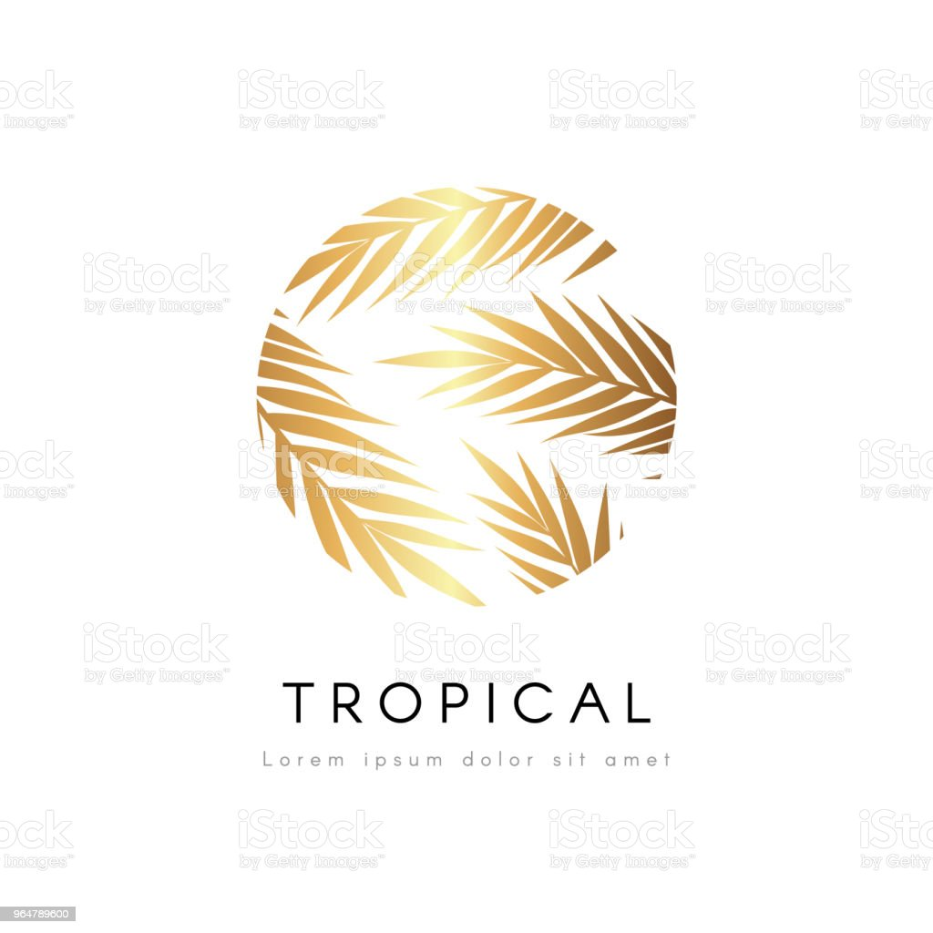 Tropical exotic emblem. Golden palm tree leaves vector logo. royalty-free tropical exotic emblem golden palm tree leaves vector logo stock illustration - download image now