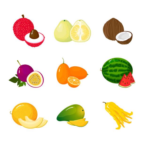 illustrations, cliparts, dessins animés et icônes de jeu de fruits exotiques tropicaux. vector illustration cartoon plat collection icône isolée sur blanc. - fruit de la passion
