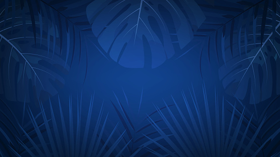 Tropical exotic rainforest background with palm leaves. Tropical night dark background