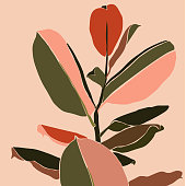 Tropical ficus leaves in a minimalist trendy style. Silhouette of a plant in a contemporary simple abstract style. Vector illustration collage. For t-Shirt Print, card, poster, social media post
