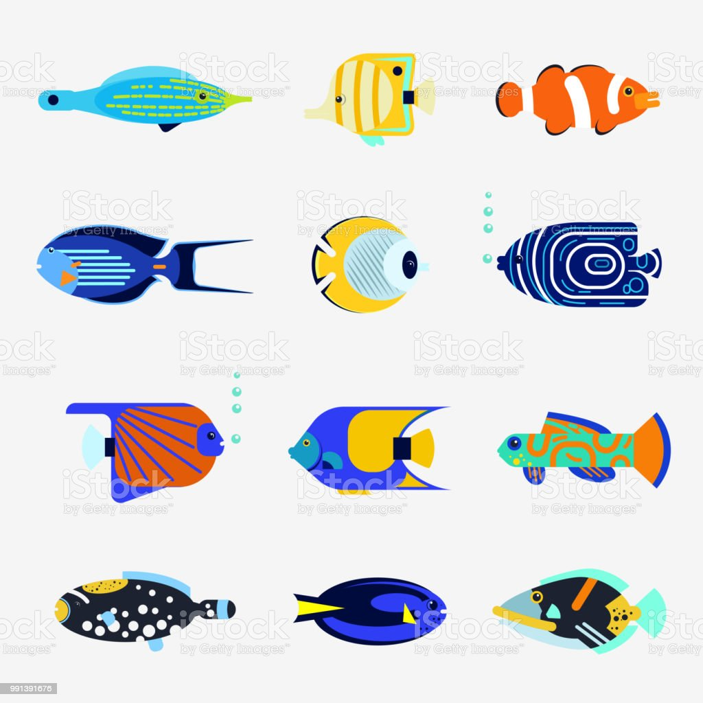 Tropical fish collection on white background vector art illustration
