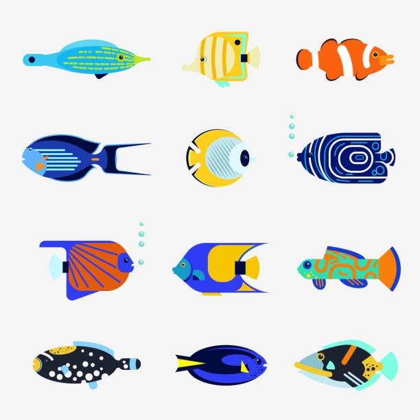 Tropische Fischsammlung auf weißem Hintergrund – Vektorgrafik