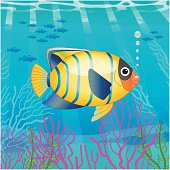 A vector illustration of a tropical fish.
