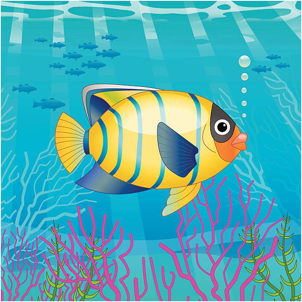 tropical fish scene A vector illustration of a tropical fish. vertebrate stock illustrations