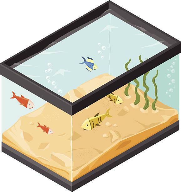 熱帯の魚をタンク&水族館 - 水族館点のイラスト素材/クリップアート素材/マンガ素材/アイコン素材