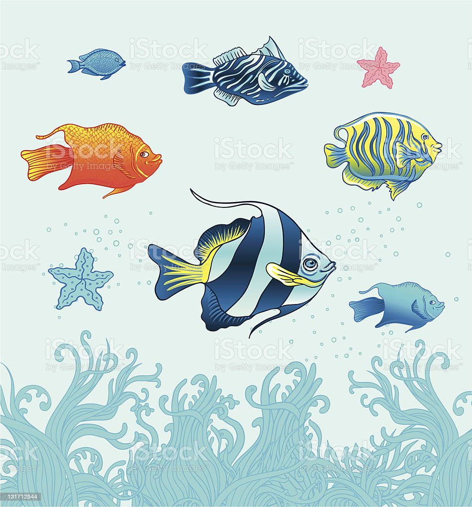 Tropical fishes. Vecror set. royalty-free stock vector art