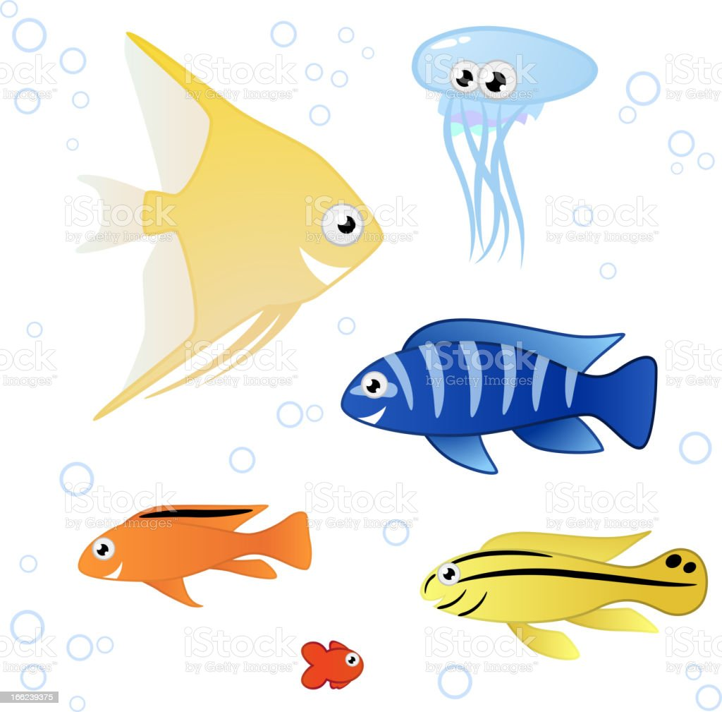 Tropical Fishes royalty-free tropical fishes stock vector art & more images of animal