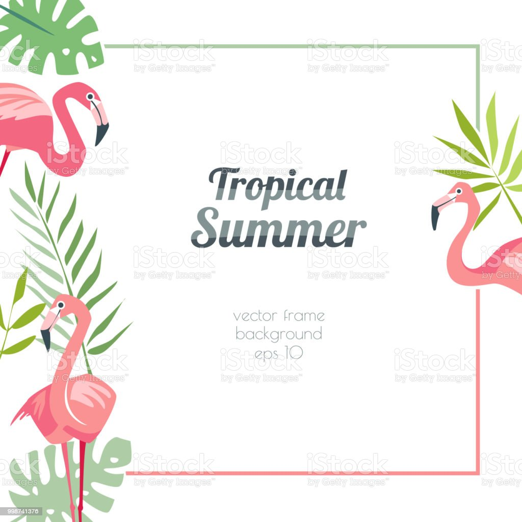 Tropical Flamingo Template Summertime With Exotic Birds And Palm ...