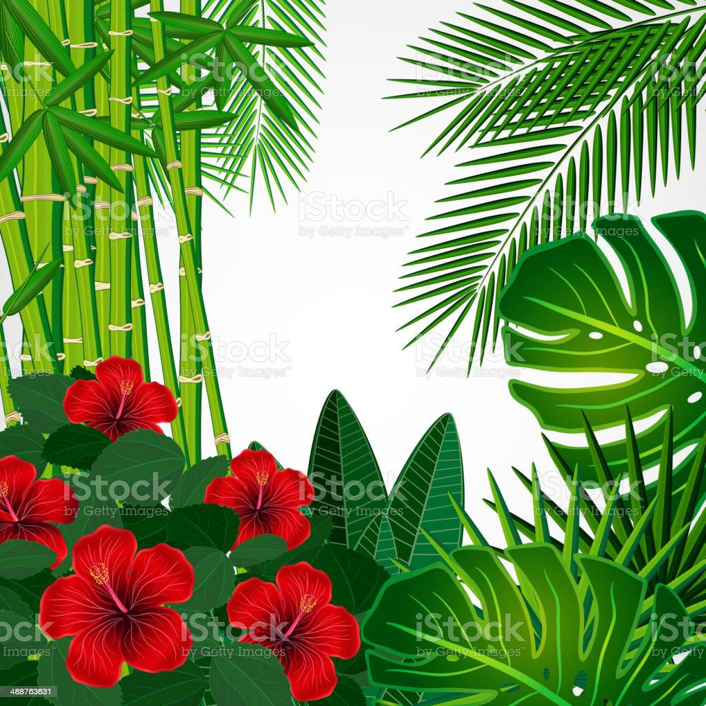 Tropical floral design background. vector art illustration