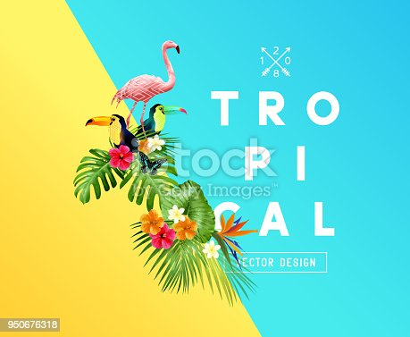 A set of bright tropical floral elements with Hibiscus flowers, toucans and Flamingos and a set of palm leaves. Vector illustration
