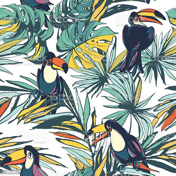 Tropical floral summer seamless pattern with palm leaves and toucans vector id542940668?b=1&k=6&m=542940668&s=612x612&h=yetfvqx2ocdgprusajs4n 1e1sqzuw zhmunxtb 2za=