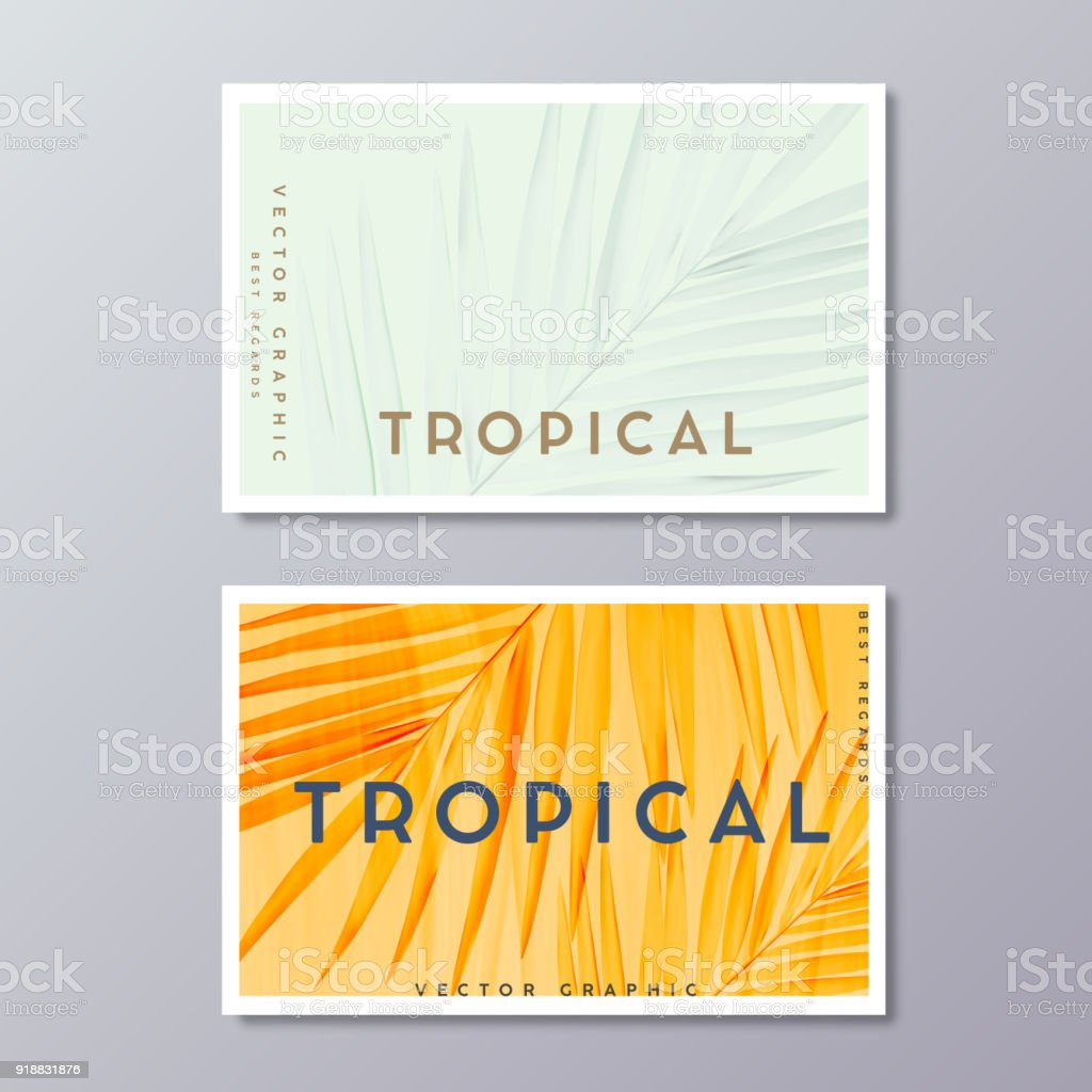 Tropical florals and foliage, botanical, bohemian business card templates. Minimalist wedding postcard design. Palm leaves decoration. royalty-free tropical florals and foliage botanical bohemian business card templates minimalist wedding postcard design palm leaves decoration stock illustration - download image now