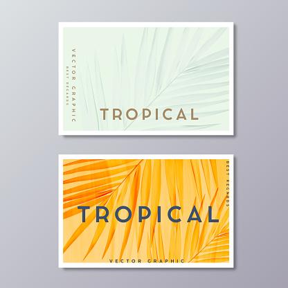 Tropical florals and foliage, botanical, bohemian business card templates. Minimalist wedding postcard design. Palm leaves decoration.
