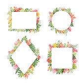Tropical flower and flamingo bird frame collection, vector illustration isolated on white background. Botanical framing, exotic plant leaf and bird framework set, lets flamingle